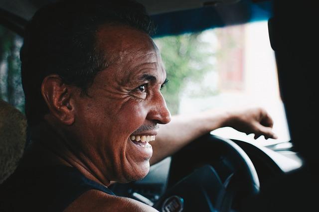 veselý řidič