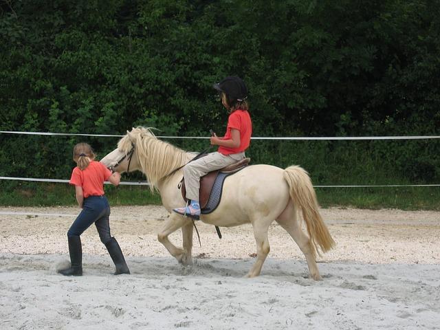 dítě na koni, projížďka